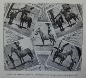 1898_124